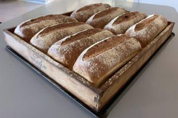 Premium Oat Bread